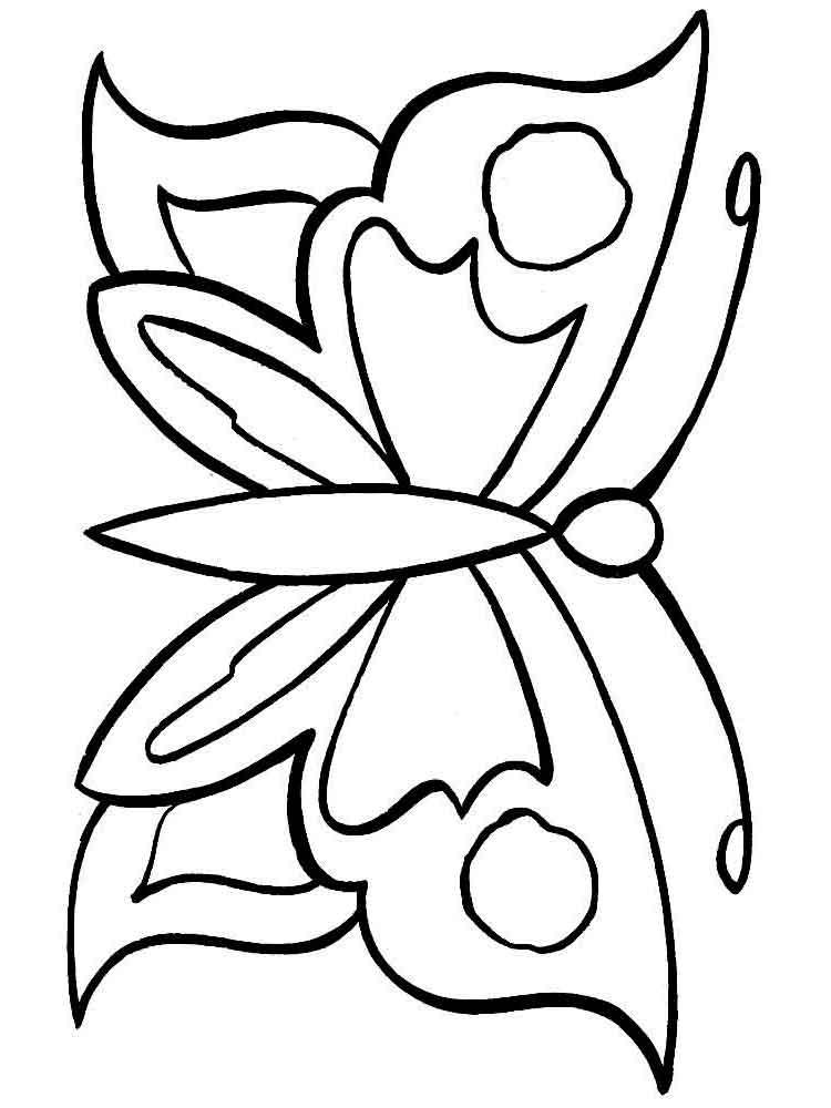 Раскраска Бабочка проказница - распечатать и скачать на ...