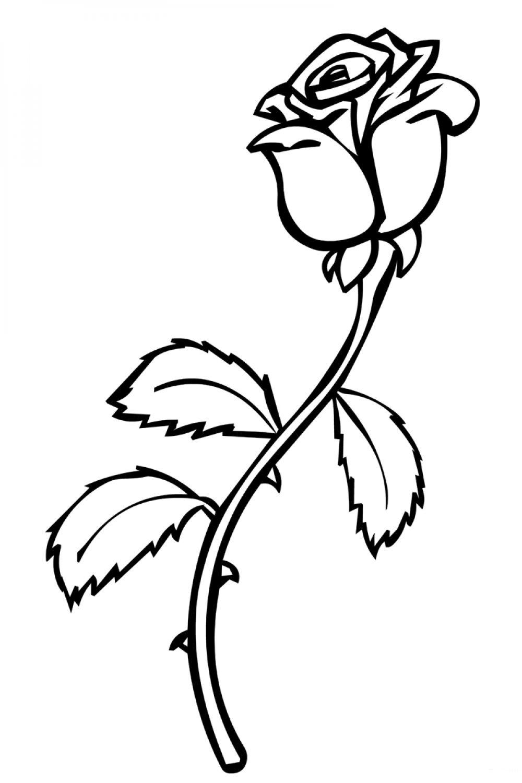 Картинки черно-белые распечатать цветы